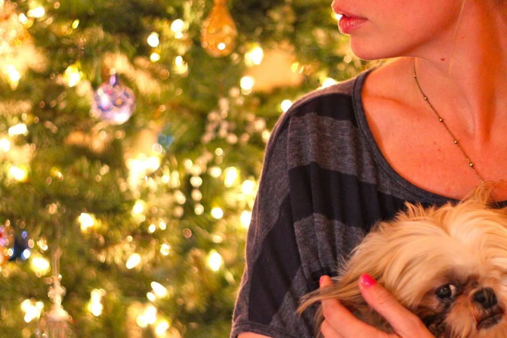 Easy Holiday Party Decor Ideas