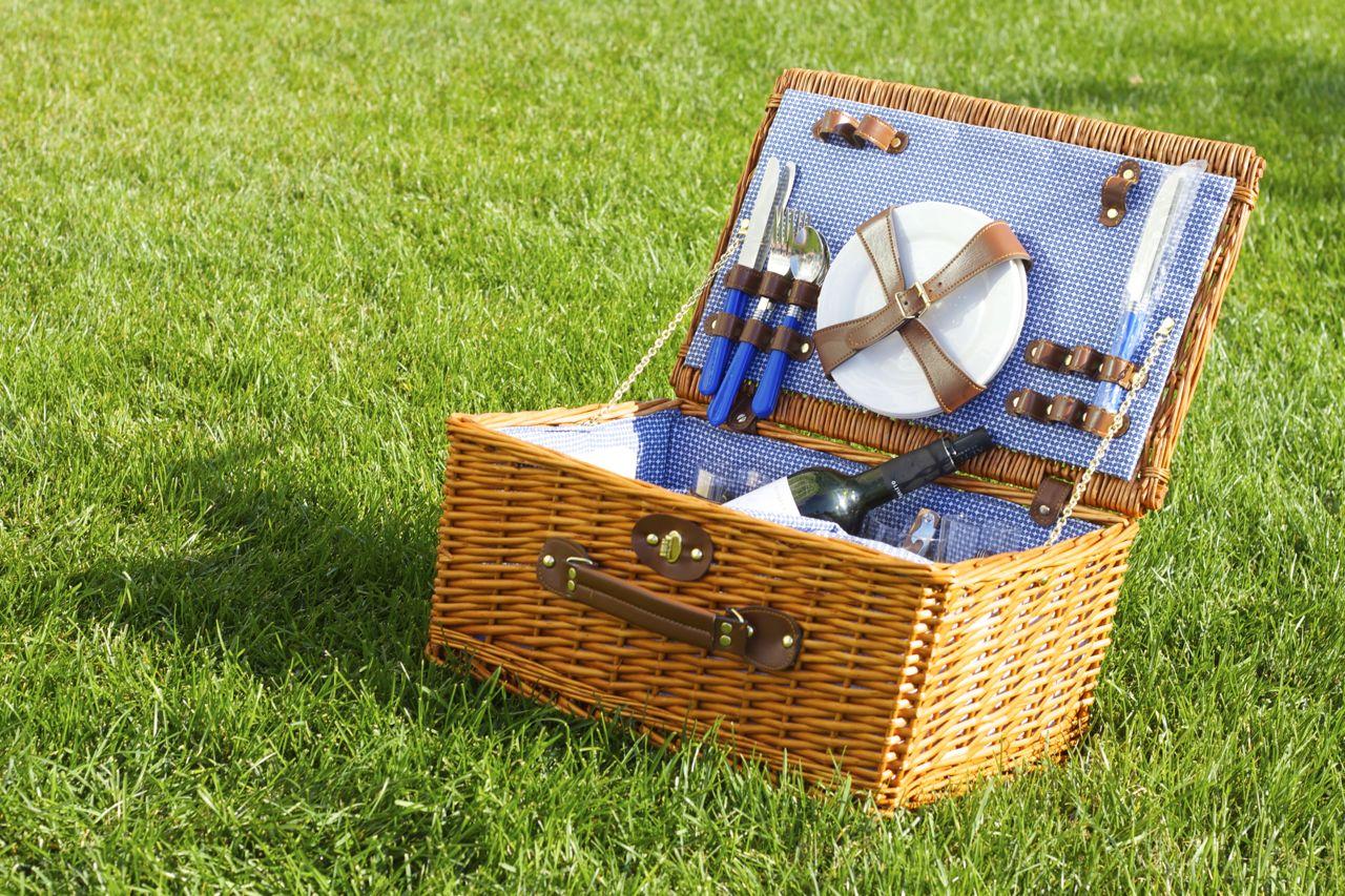 yale picnic 5