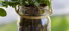 DIY Mason Jar Hanging Herb Planter