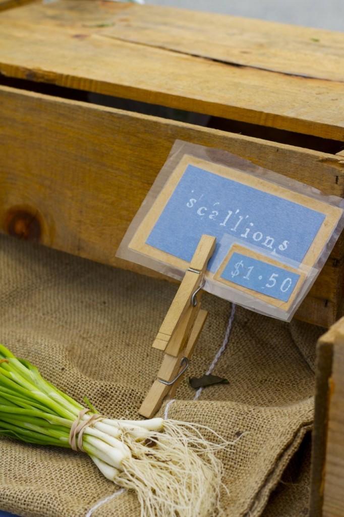 farmers market scallions