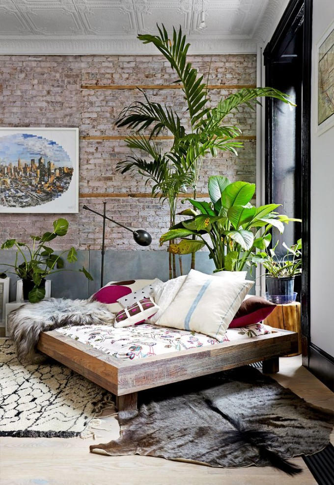 bedroom plants white rug palm
