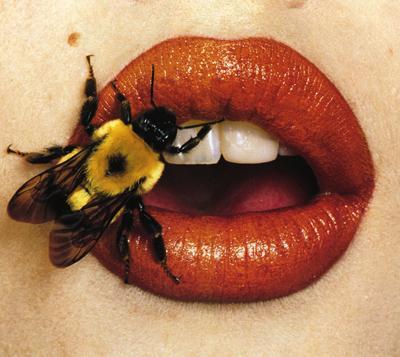 bee stung lip serum
