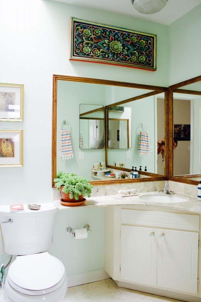 bathroom makeover mirror plant