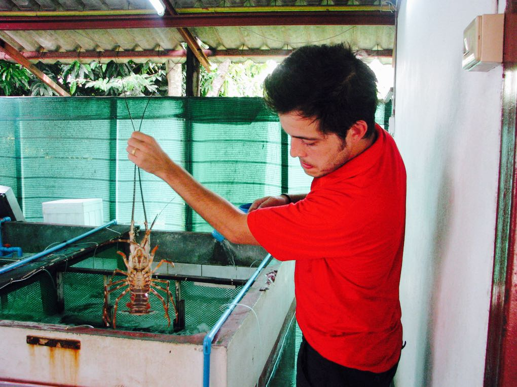 Holding up a crustacean in Phuket