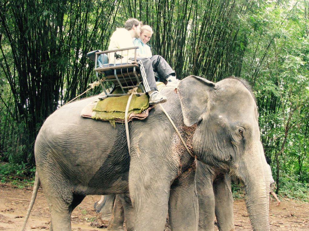 Riding elephants in Bali