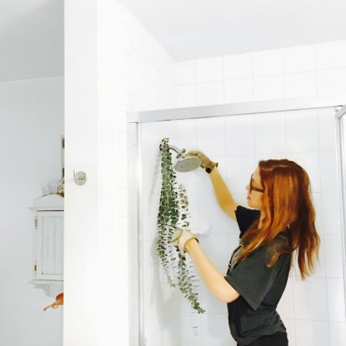 hanging eucalyptus in a shower for medicinal benefits