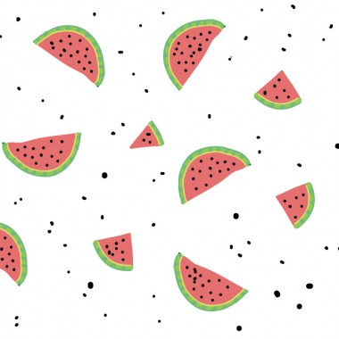 illustration of watermelon by erin williams
