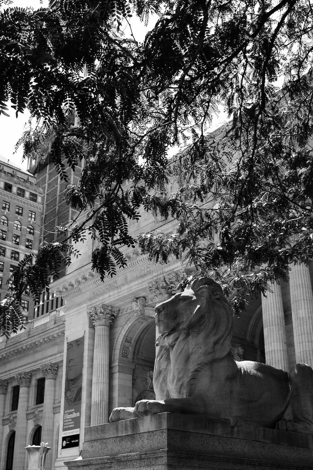 New York City public library in black and white