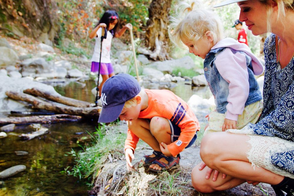 looking for tadpoles in the state park