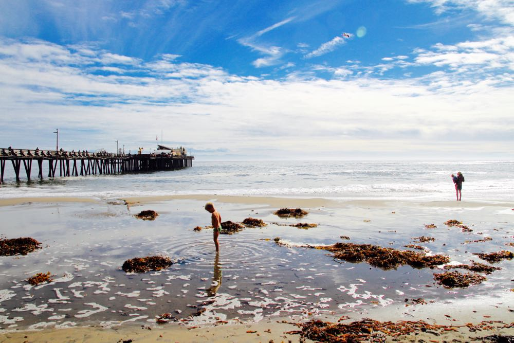 What to do in Capitola Beach with kids
