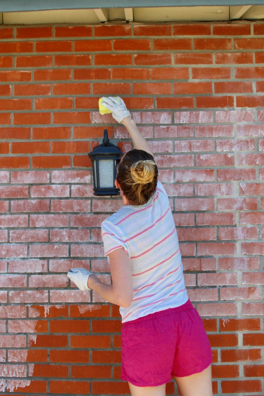 ideas for what to do about an ugly brick wall