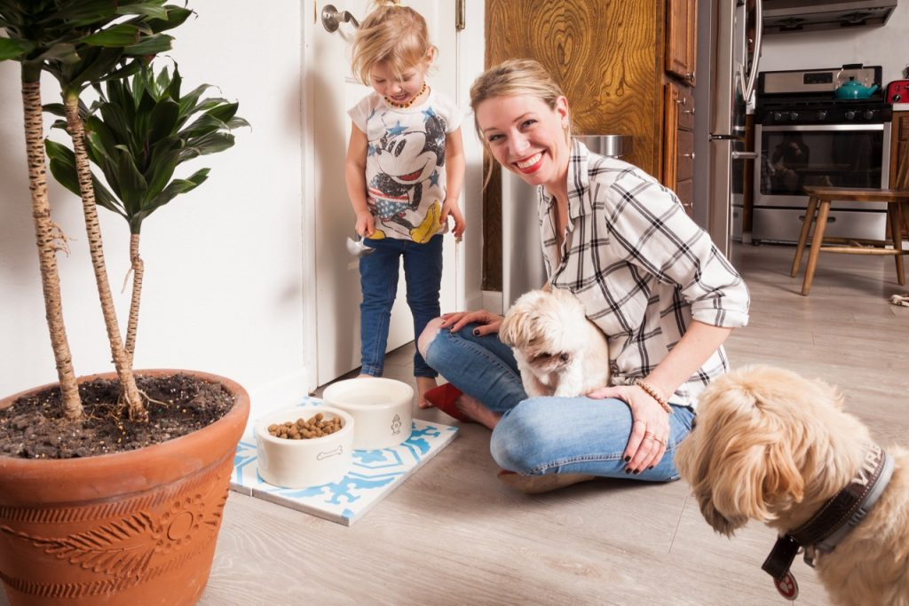 how to use Clorox bleach to get rid of parvovirus