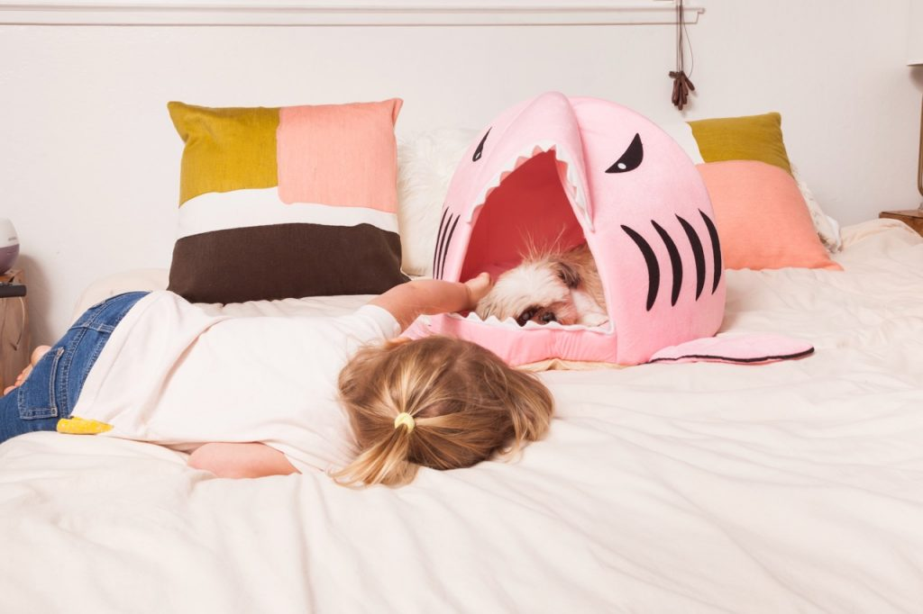 pink shark dog pillow