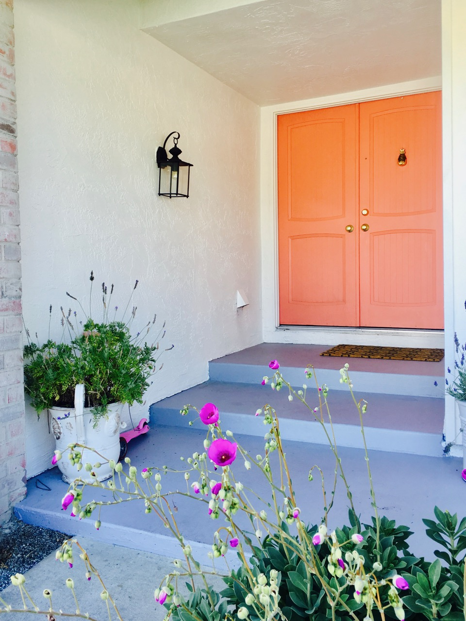 pink front door on a ranch house