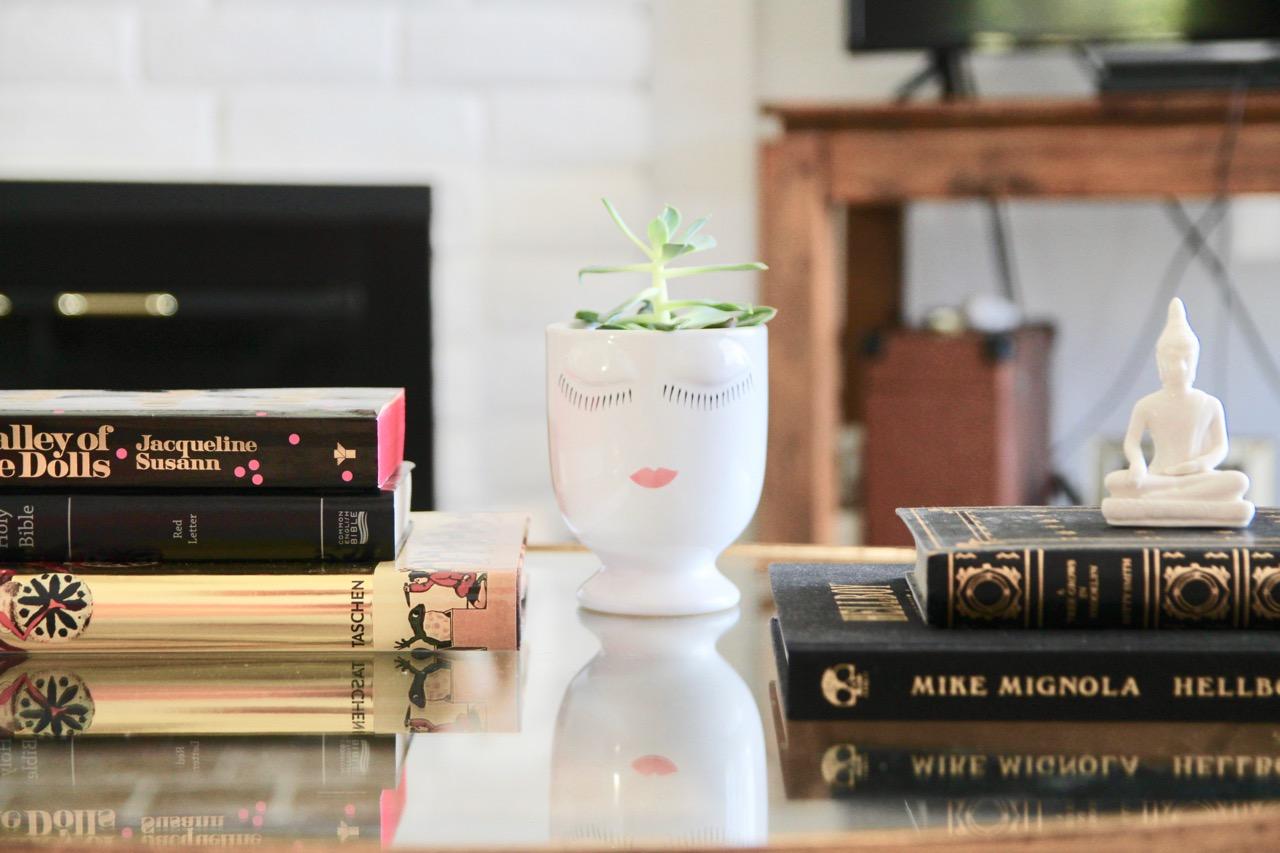 ceramic planter for a succulent