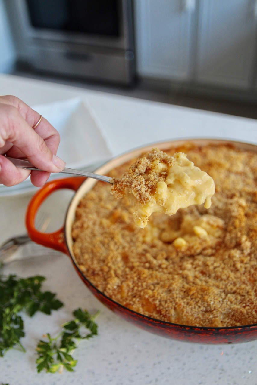 delicious macaroni and cheese for adults made with fairlife milk