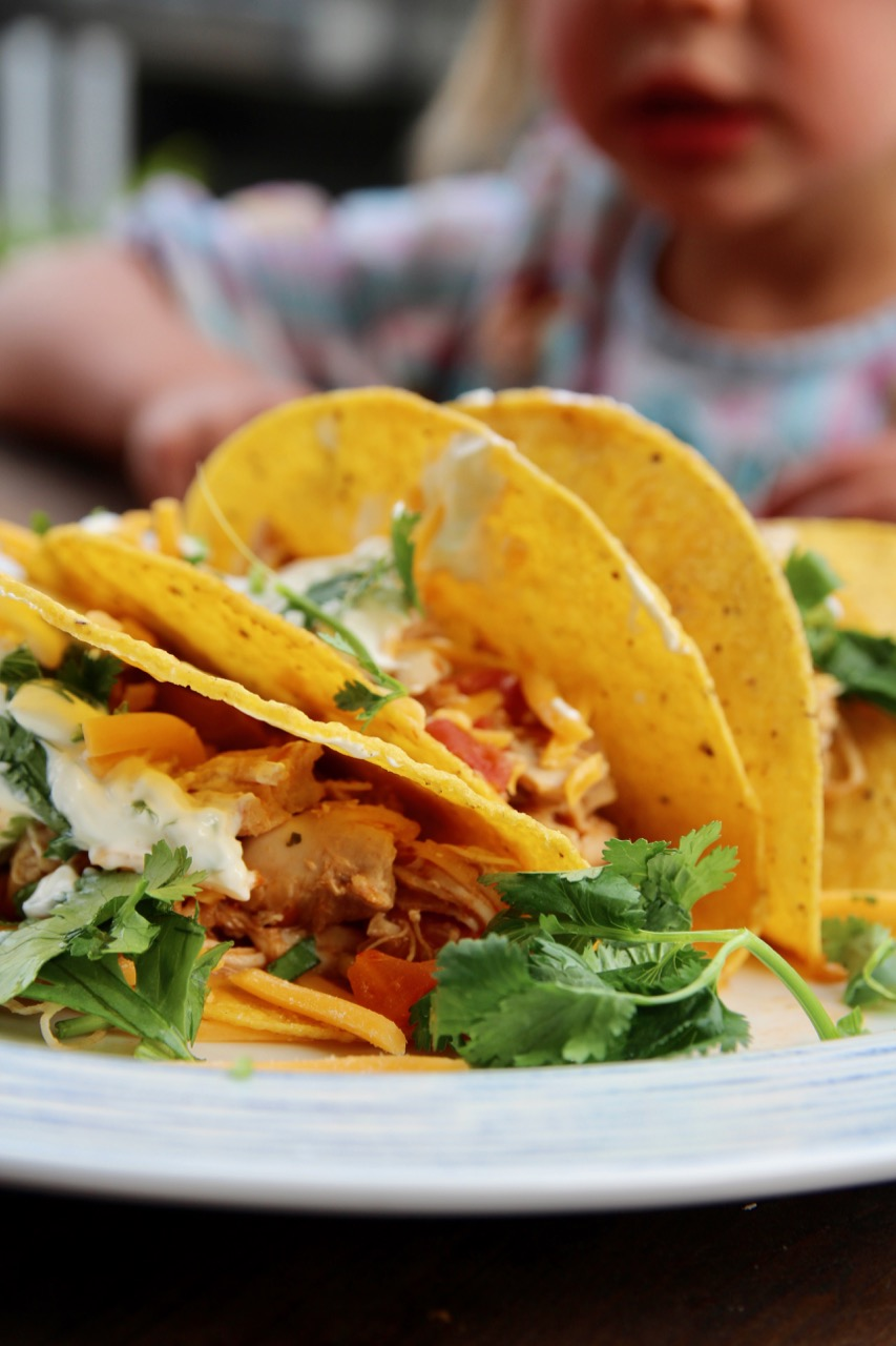 slow cooker four ingredient chicken tacos