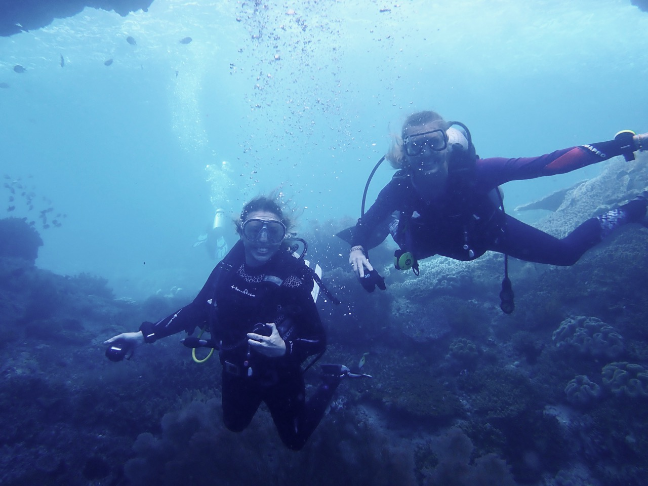 indonesia liveaboard scuba diving
