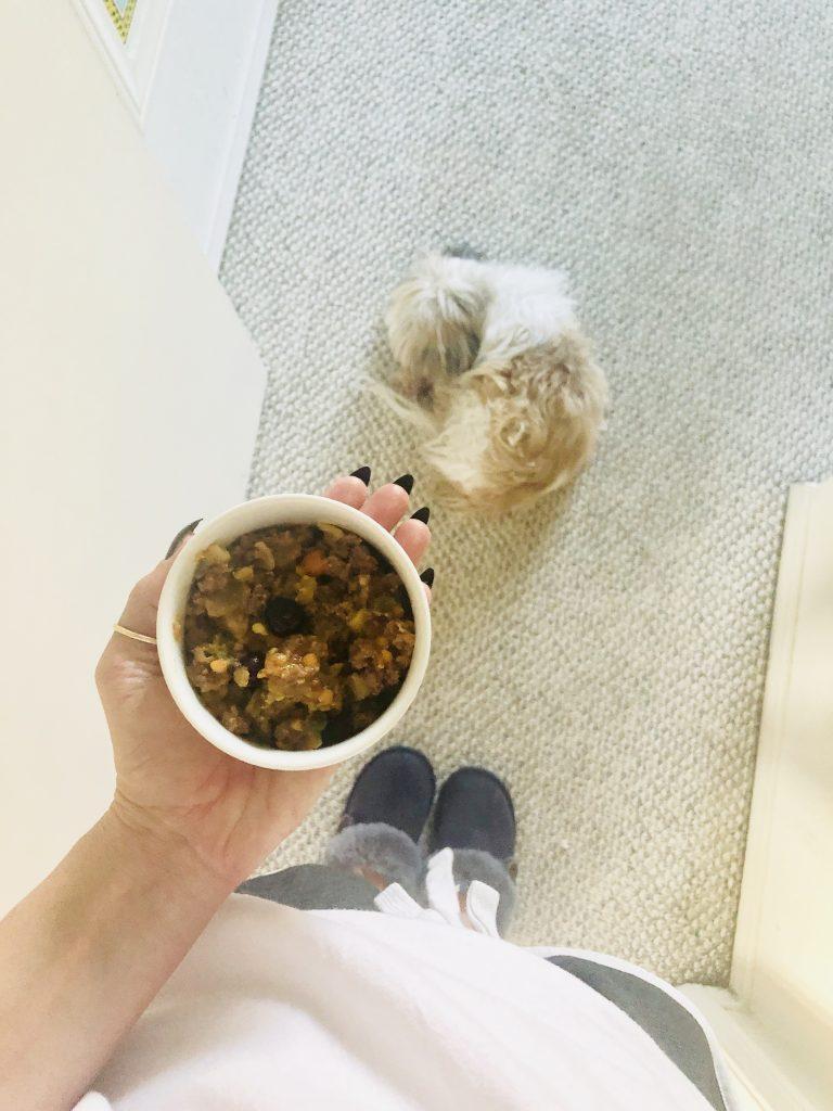 how to make holistic dog food