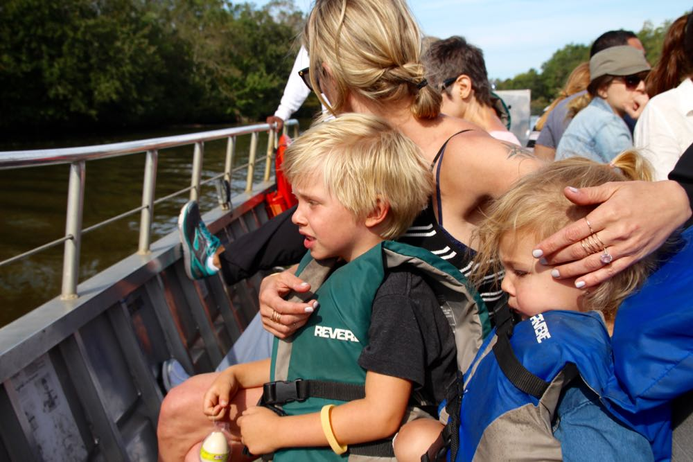 New Orleans alligator swamp tour review